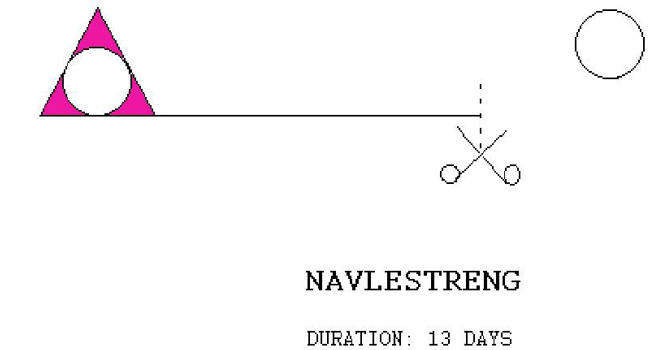 The 6th performance of RULE PINK: NAVLESTRENG